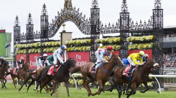 Melbourne Cup 2020 – Predictions and Top Betting Sites in Australia